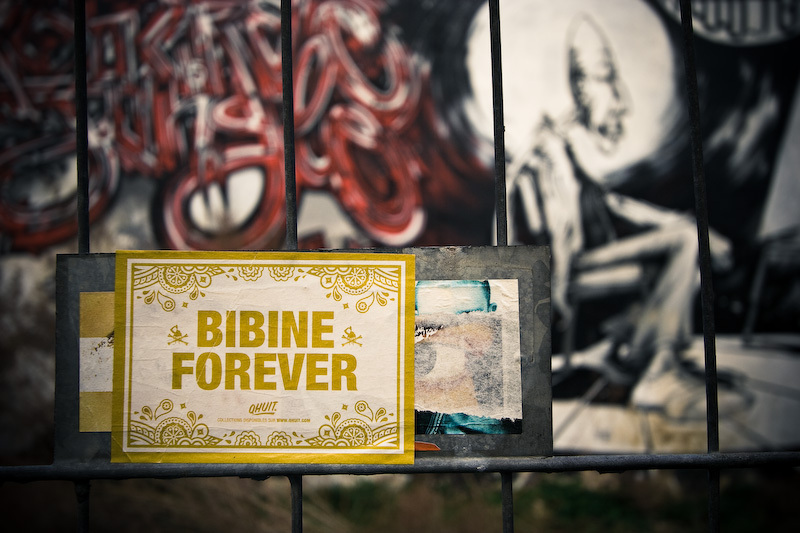 Bibine forever