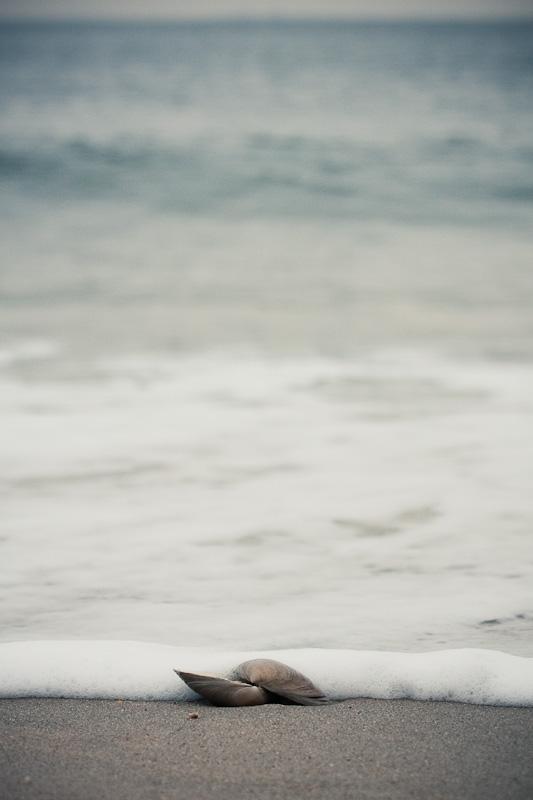 High tide.