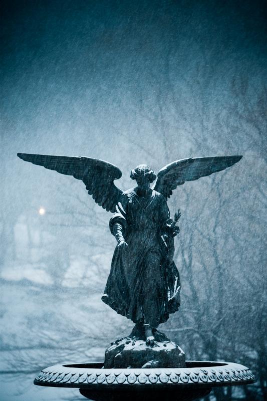 Snowy Angel.