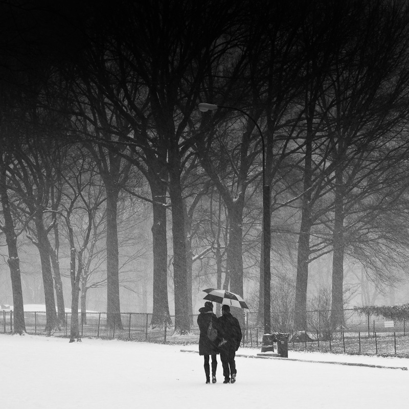 Two under the Snow Storm in Central Park.