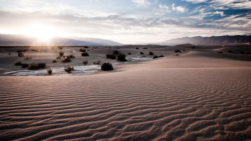 Mesquite Dunes #2.