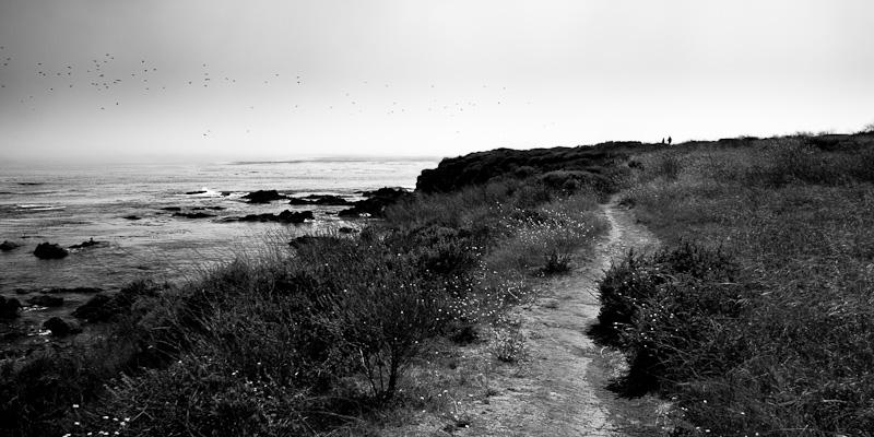Along the Coast.