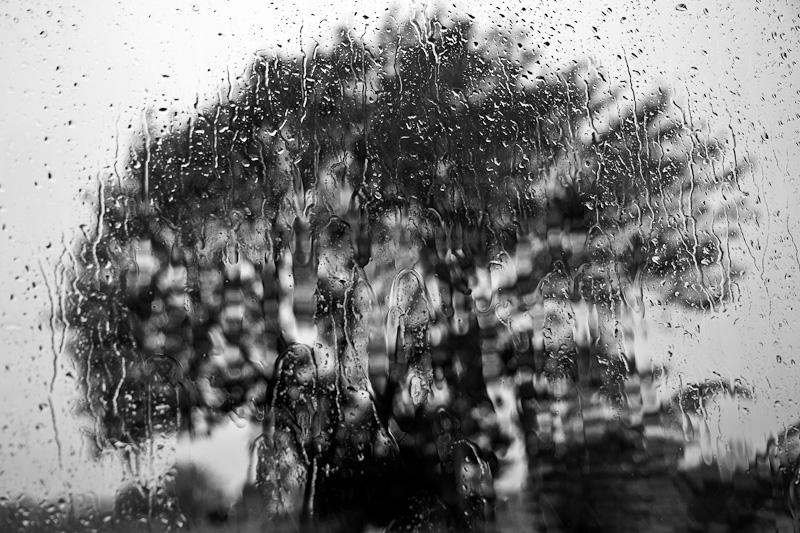 A window on a rainy day.