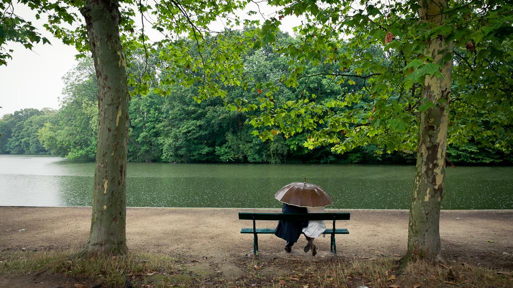 Under the rainy trees.