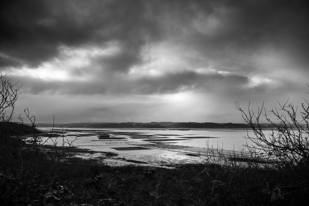 Oyster farms in Morlaix' Bay.