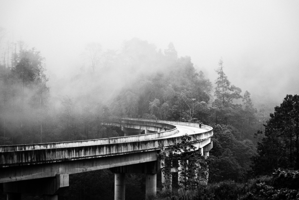 A turn in the mist.