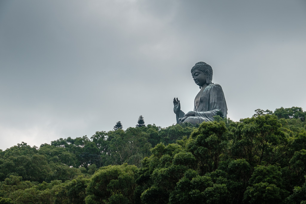 The Buddha above the trees.
