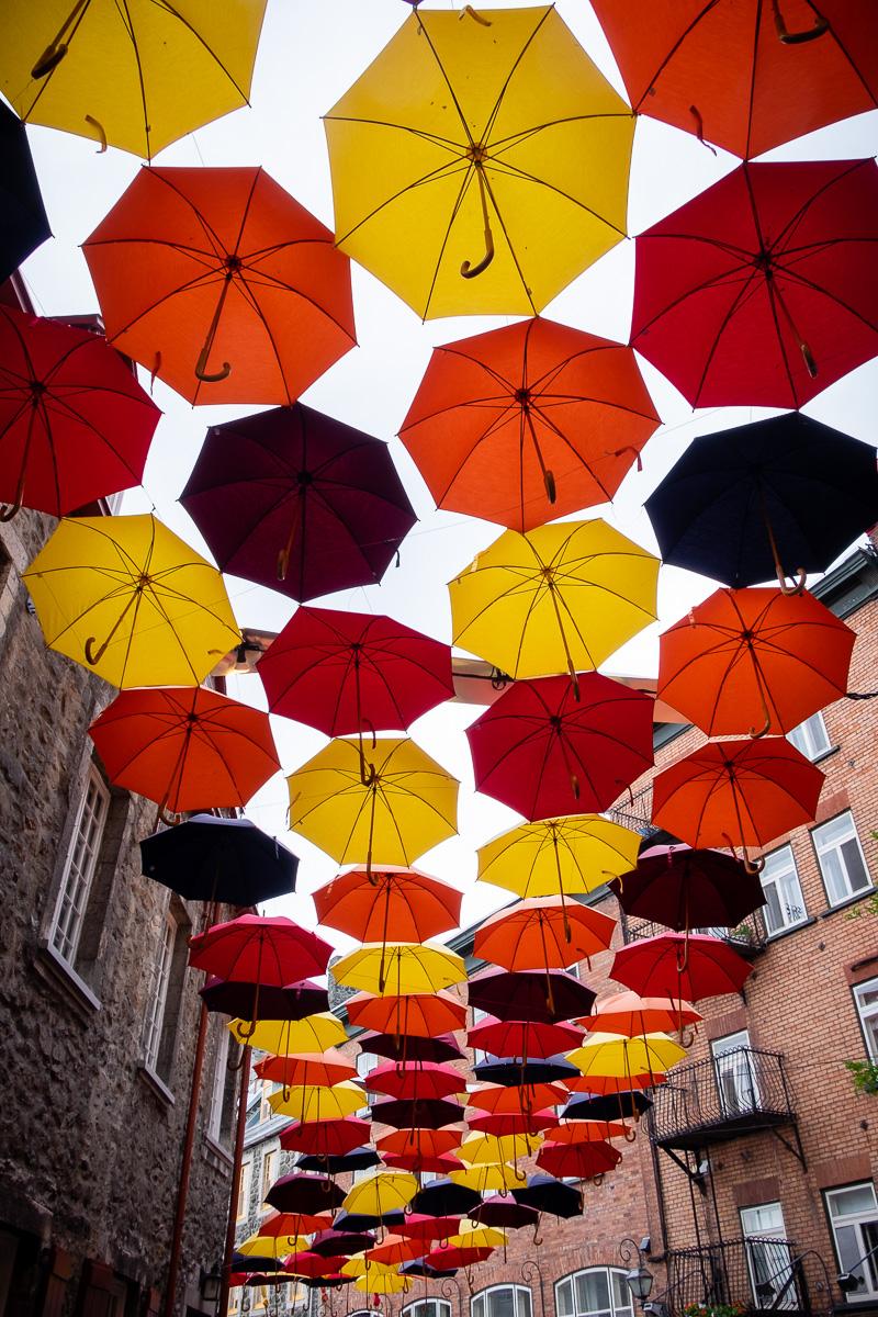Umbrellas in Québec.